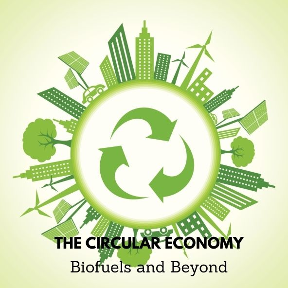 The Circular Economy- Image w Text